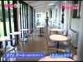 ナツメ・道楽 東京都美術館 動画~2012年12月15日